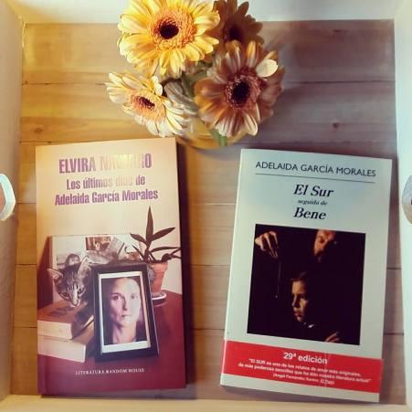 Elvira Navarro - Los últimos días de Adelaida García Morales