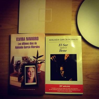 Elvira Navarro - Los últimos días de Adelaida García Morales3